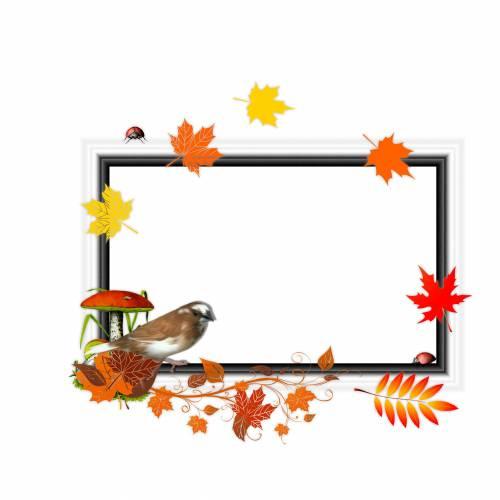 Природой, рамки для текста картинки улетающих птиц осенью