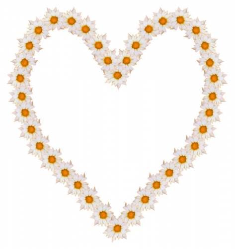 Сердечки Рамка-сердечко из ромашек рамки