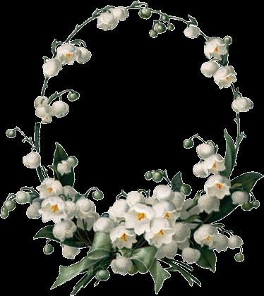 зимние цветы картинки с днем рождения